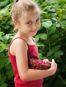 Meisje met geplukte frambozen