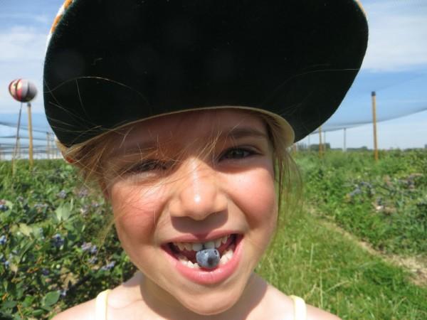 Lily met blauwe bes in mond