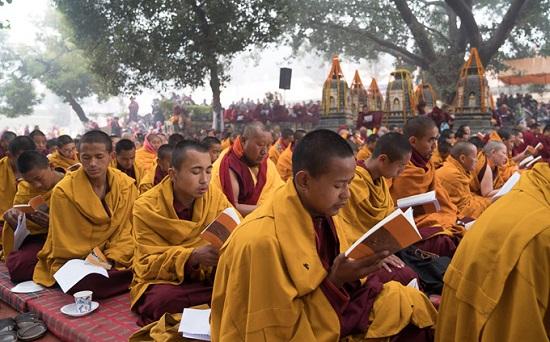 Тибетские монахи - как происходит обучение. Школа Далай Ламы