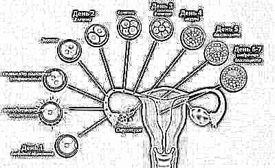 Aktivieren ohne schwangerschaft milchdrüsen Milchbildung anregen
