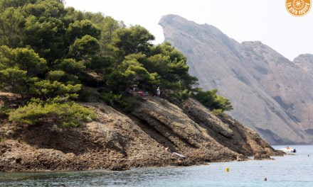 Visite de l'île Verte | La Ciotat