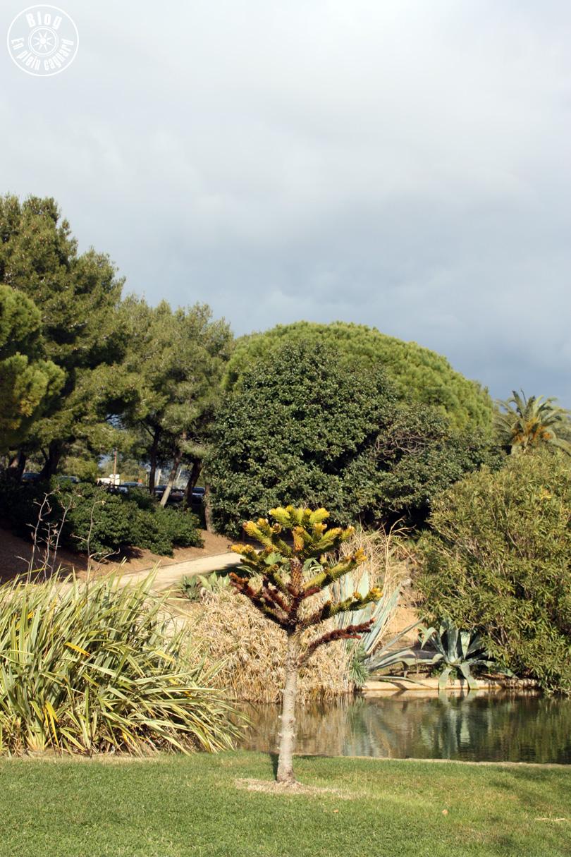 parc méditerranée45