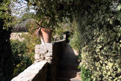 jardin saint-bernard hyères 14