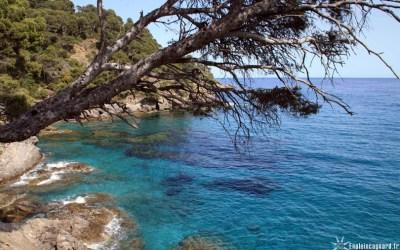 Var : Où se baigner à l'abri du Mistral ? | Var