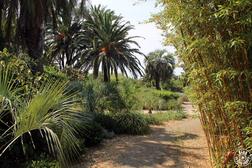 jardin_emmanuel_lopez_ile_porquerolles