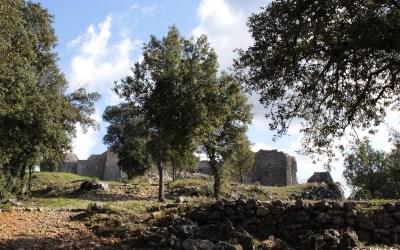 Dans la colline du Château de Pontevès | Flassans-sur-Issole