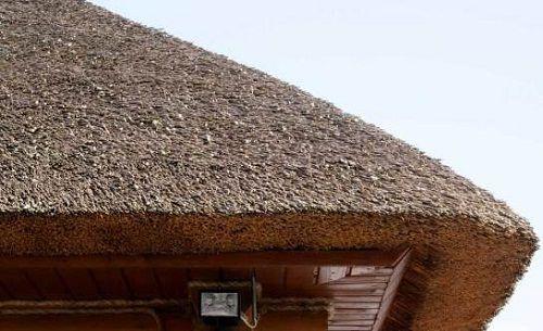 O telhado de palha é convenientemente incomum e barato