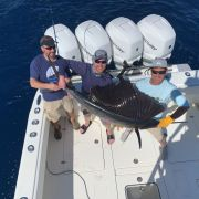 February sailfish