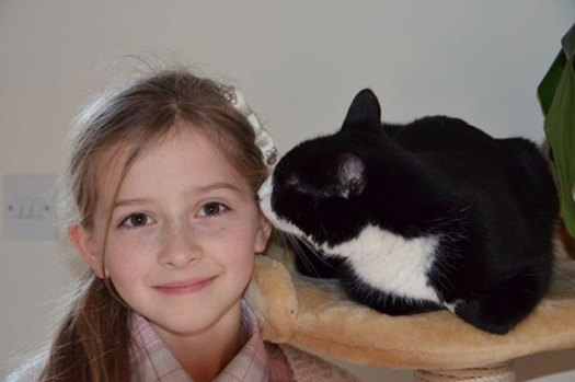 Pippa Isn't a Diabetic Cat.  She Has Saved her Diabetic Human!