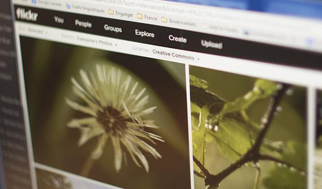 Come fermare Yahoo dallapprofittare le vostre immagini di Flickr