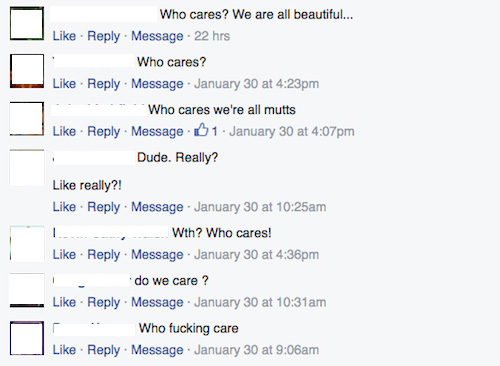 common types of commenters, facebook commenters