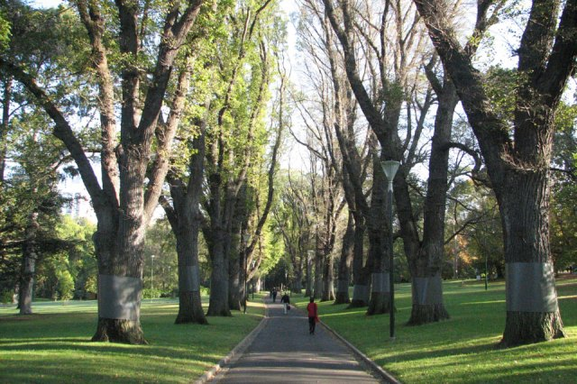 Melbourne's Fitzroy Gardens