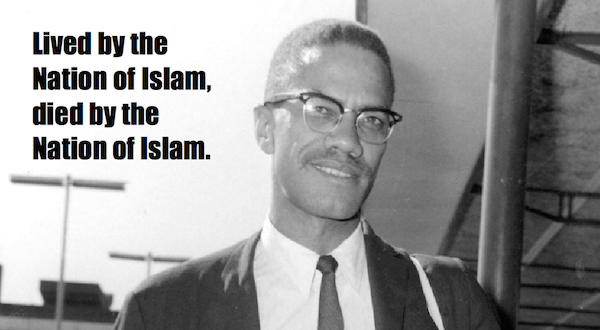 one-line summaries famous historical figures, malcolm x
