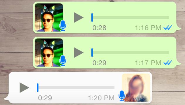 Lavoro colto delle ricevute di Whatsapp infine il modo avete pensato che facciano