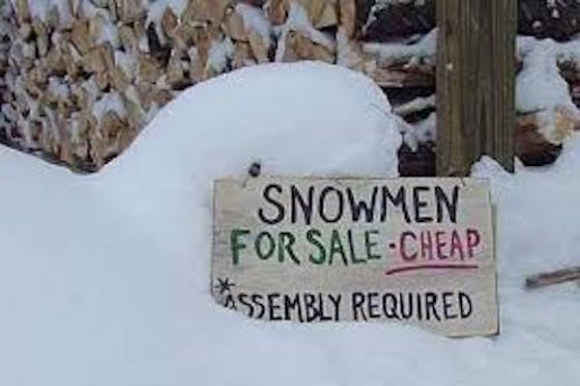 funny winter photos, funny snow photos, idiots in winter, snowmen for sale
