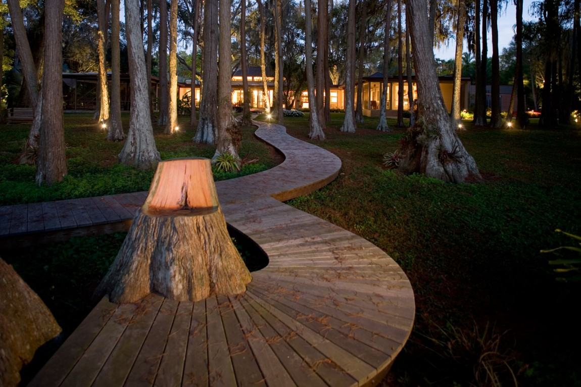 wooden walkway through cypress trees