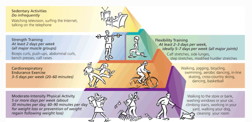How Does Cardiorespiratory Endurance Affect Physical Fitness