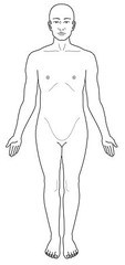 Body is standing straight, facing forward, upper limbs at side and palms facing forward.