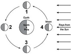 Motions Of The Earth Moon And Sun Flashcards Quizlet
