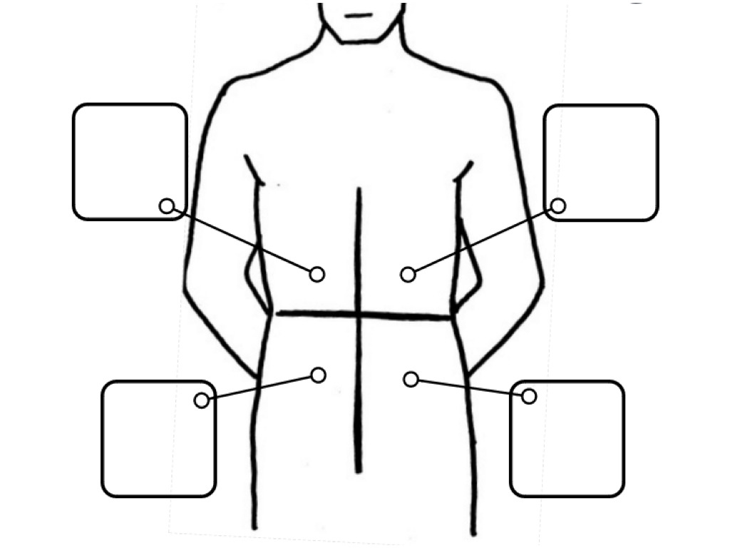 Diagram Of The 4 Quadrants Of The Abdomen