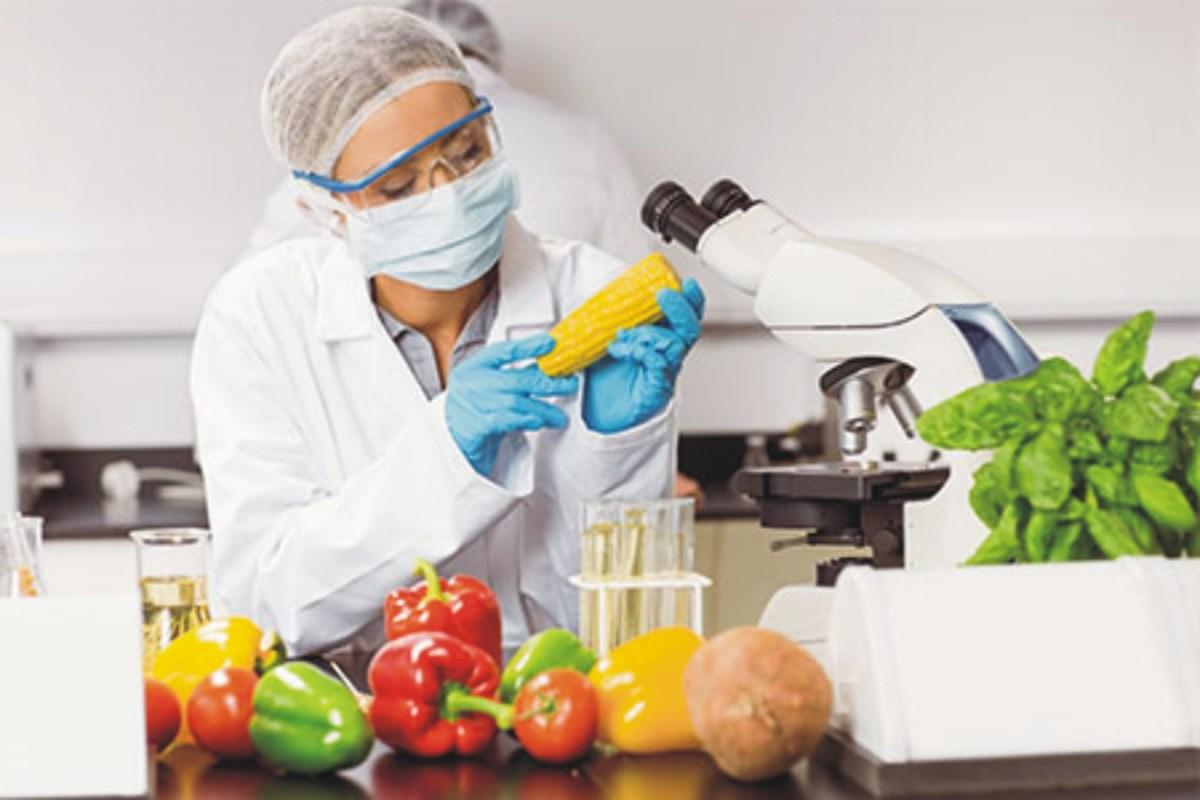 marketing para nutricionistas examinando alimentos