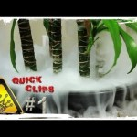 QC#1 – Hot Water & Dry-Ice In a Plant Pot (Just for Fun)