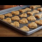 Homemade Dog Treats – How to Make Doggie Biscuits