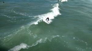 Surfer Venice Beach