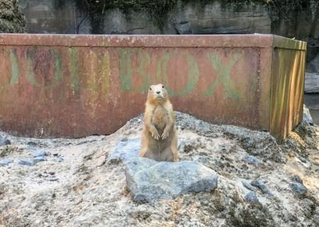 Hannover Hanover Zoo
