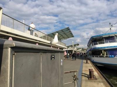 Landesbrücke gull Hamburg