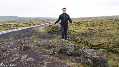 Mossy lava field on the way (Eldhraun)