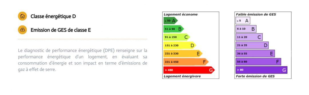 Affichage du DPE sur un site internet d'agence immobilière