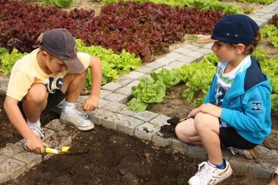 Grade-1-Gardening-Outing (21)