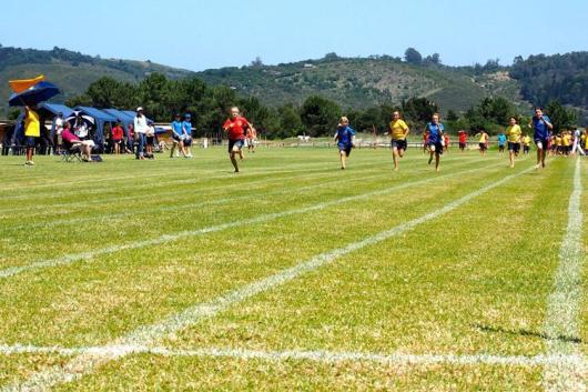 Prep-Inter-House-Athletics(30)