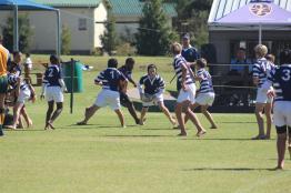 Glenwood Rugby Festival_Prep (1) (Copy)