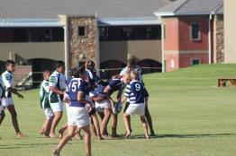 Glenwood Rugby Festival_Prep (13) (Copy)
