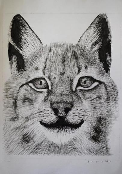 Oakhill Grade 9 Art (6)