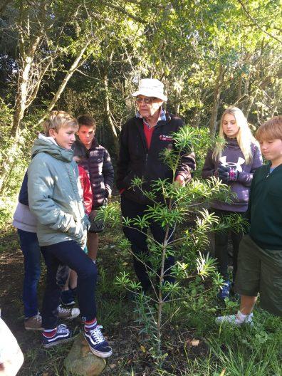 3 Grade 6 to Pledge Park appreciating regrowth (4)