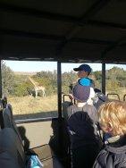 Oakhill Grade 1 African Safari Adventure (10)