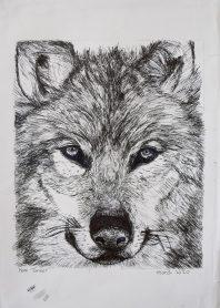 Grade 9 Pen Drawings (1)