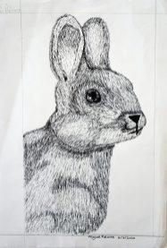Grade 9 Pen Drawings (10)