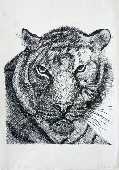 Grade 9 Pen Drawings (5)