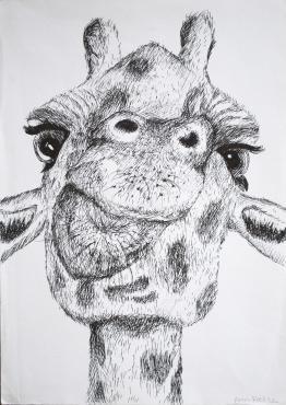 Grade 9 line drawings (8) (Copy)