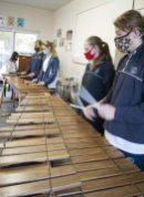 Marimbas (7)