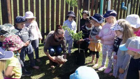 Arbor Week Little Oaks 1