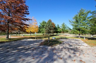 An empty campsite at Addison Oaks. A fire ring and picnic table are in the middle of the site. Several trees, with some leaves changing to fall colors, surround the area.
