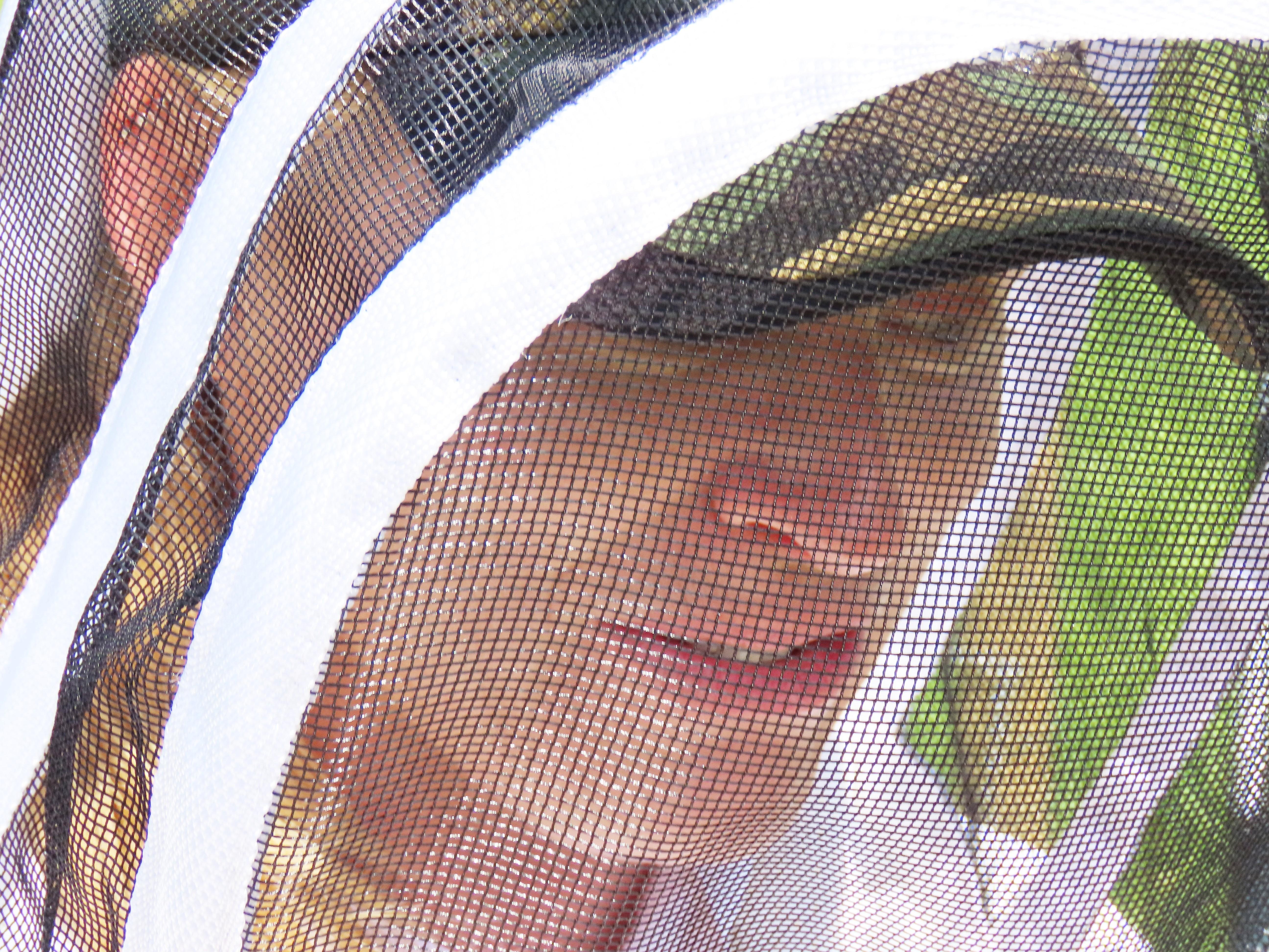 beekeeper veil