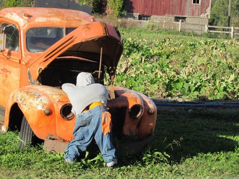 pumpkin man display