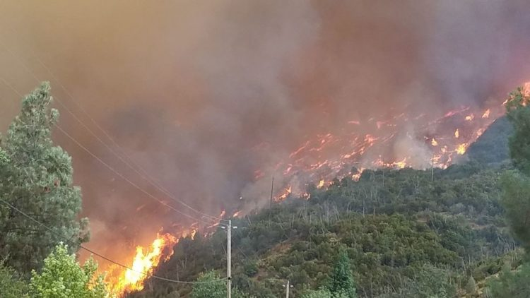 President Donald J. Trump Approves California Emergency Declaration For Carr Fire