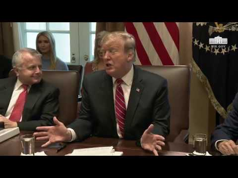 Donald Trump Talks South Korea Trade, Immigration, In Cabinet Meeting